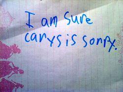 Carys is sorry