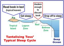 Tess reef sleep