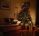 Dec05_tree